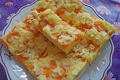 Altenburger Mandarinenkuchen 1