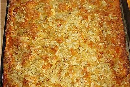 Altenburger Mandarinenkuchen 10