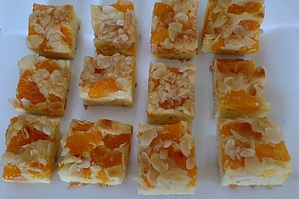 Altenburger Mandarinenkuchen 27