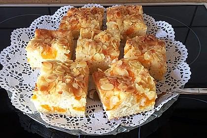 Altenburger Mandarinenkuchen 28