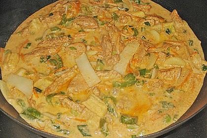 Thailändisches Chickencurry 7