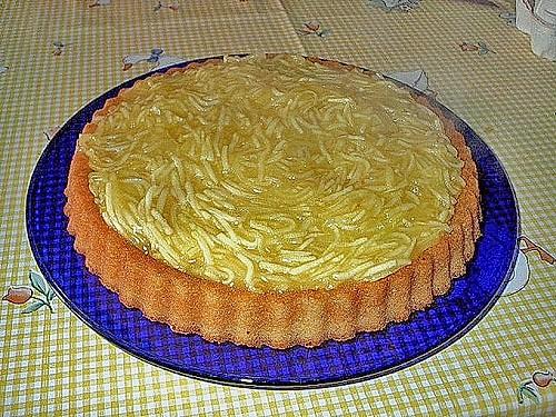 apfelkuchen einmal anders rezept mit bild von jschch123