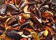 Muscheln aus dem Wok