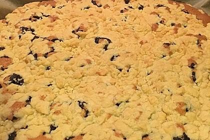 Apfelkuchen mit Streuseln 85