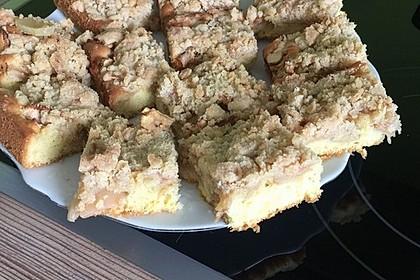 Apfelkuchen mit Streuseln 103