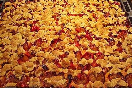 Apfelkuchen mit Streuseln 77