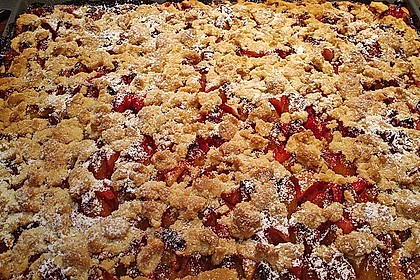 Apfelkuchen mit Streuseln 66