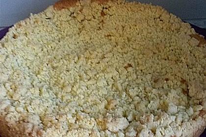 Apfelkuchen mit Streuseln 89