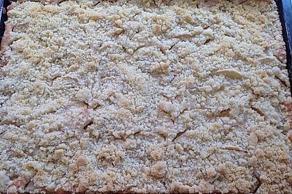 Apfelkuchen mit Streuseln 64