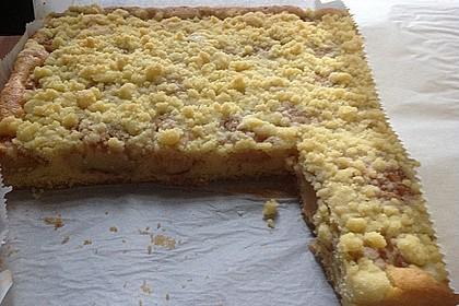 Apfelkuchen mit Streuseln 73