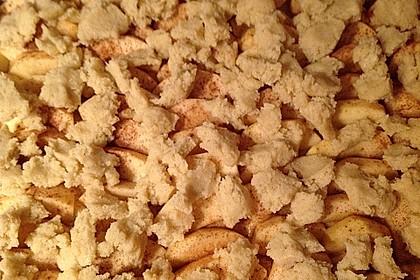 Apfelkuchen mit Streuseln 74
