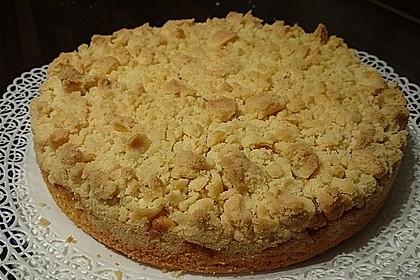 Apfelkuchen mit Streuseln 30