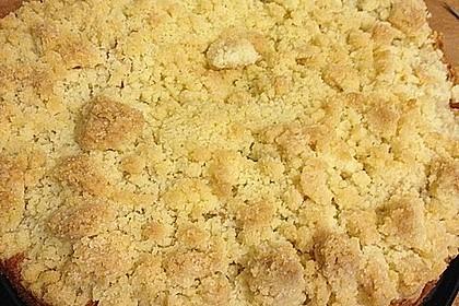 Apfelkuchen mit Streuseln 48