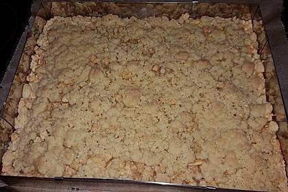Apfelkuchen mit Streuseln 96