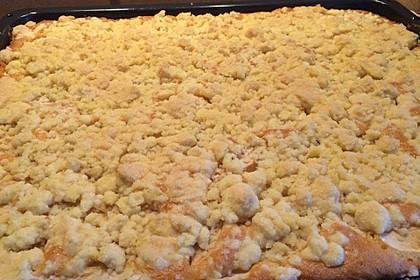 Apfelkuchen mit Streuseln 68
