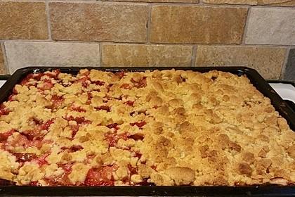 Apfelkuchen mit Streuseln 54