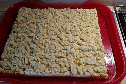 Apfelkuchen mit Streuseln 27