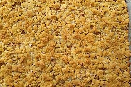 Apfelkuchen mit Streuseln 52