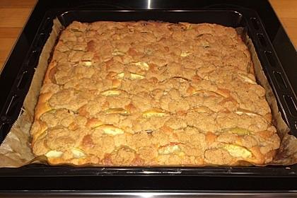 Apfelkuchen mit Streuseln 47