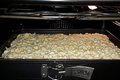 Apfelkuchen mit Streuseln 31