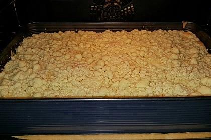 Apfelkuchen mit Streuseln 18