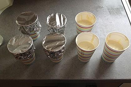 Mango-Joghurt-Eis 2