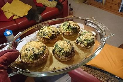 Spinat-Champignon Tapas