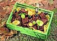 Schoko-Würfel mit Obst