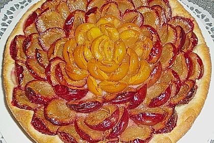 Pflaumenkuchen mit Streuseln 16