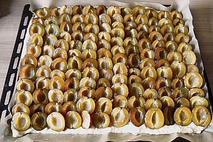 Pflaumenkuchen mit Streuseln 67