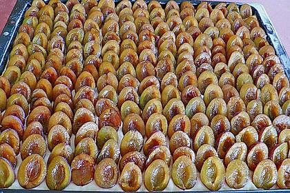 Pflaumenkuchen mit Streuseln 39