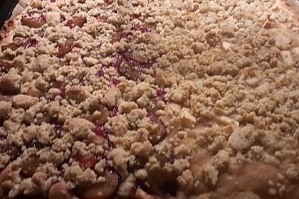 Pflaumenkuchen mit Streuseln 64