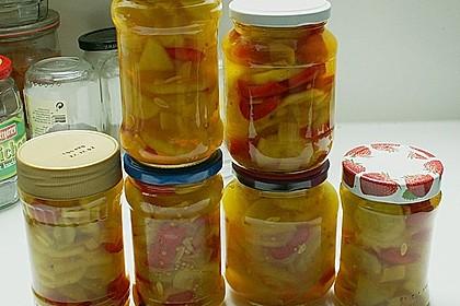 Eingelegte Curry - Zucchini 21