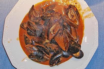 Muscheln in Tomatensoße 3