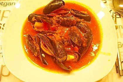 Muscheln in Tomatensoße 4