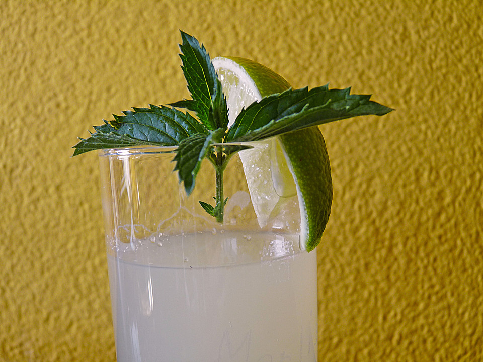 ingwer limonade getuned rezept mit bild von b b q. Black Bedroom Furniture Sets. Home Design Ideas