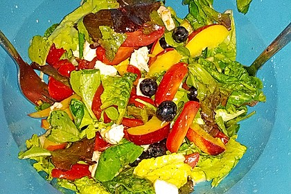 Tomaten-Nektarinen-Mozzarella-Salat 1