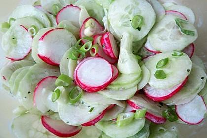 Frühsommerlicher Gurkensalat 8