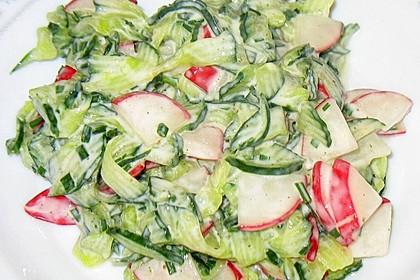 Frühsommerlicher Gurkensalat 14