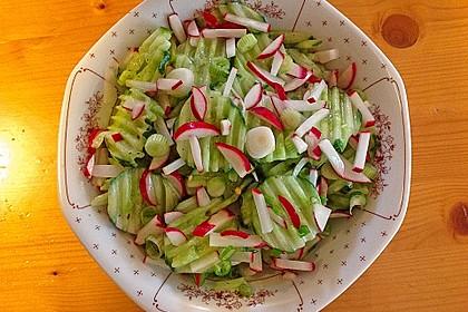 Frühsommerlicher Gurkensalat 4