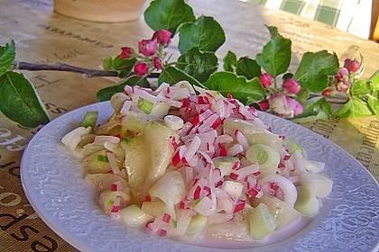 Frühsommerlicher Gurkensalat