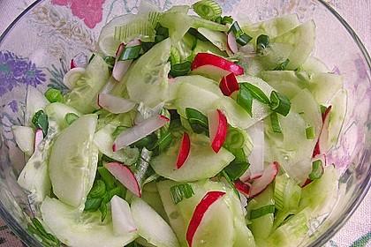 Frühsommerlicher Gurkensalat 6
