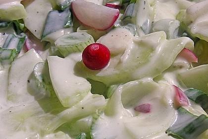 Frühsommerlicher Gurkensalat 12