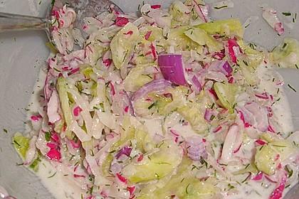 Frühsommerlicher Gurkensalat 16