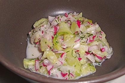 Frühsommerlicher Gurkensalat 15
