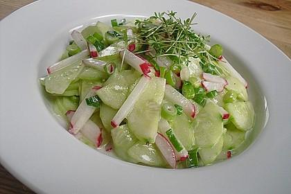 Frühsommerlicher Gurkensalat 2