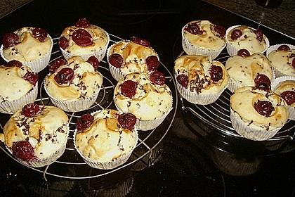 Tassen - Muffins 8