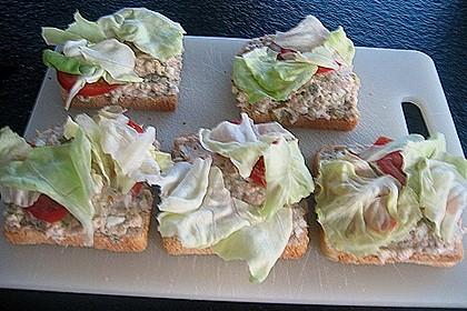 Thunfisch - Sandwich 2