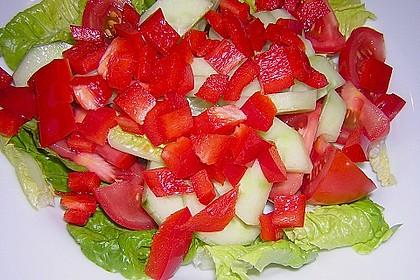 Griechischer Hirtensalat 18