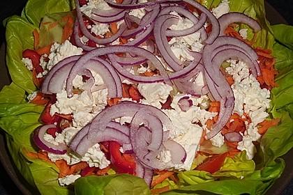 Griechischer Hirtensalat 6